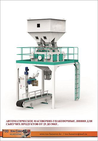 Упаковочное оборудование для зерна 1000 мешков, фото 2