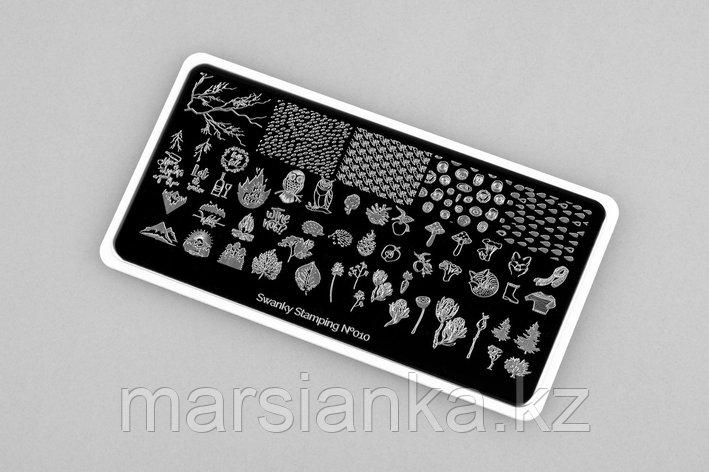 Пластина Swanky Stamping #10, фото 2