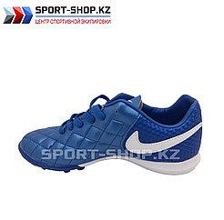 Детские СОРОКОНОЖКИ Nike Q10