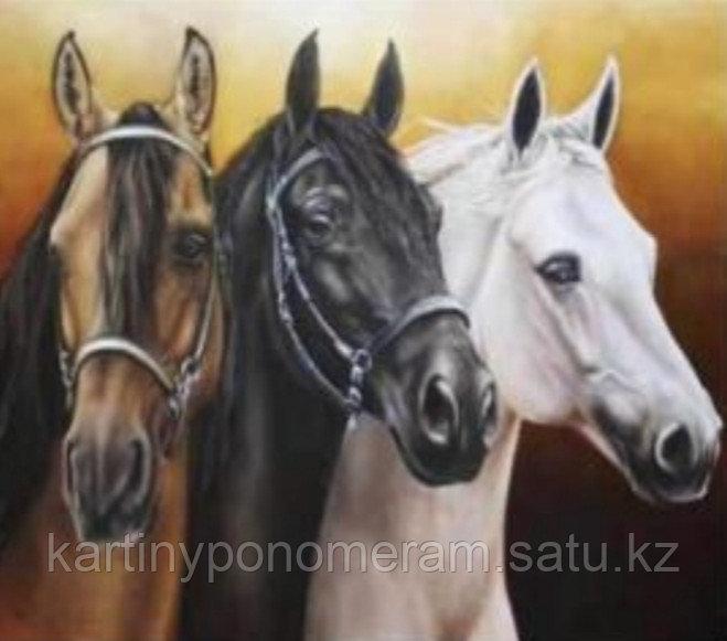 """Картина по номерам """"Три коня"""""""