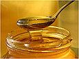 Натуральный мёд с ВКО, фото 2