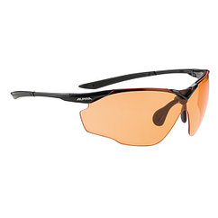 Alpina  солнцезащитные очки Splinter Shield VL