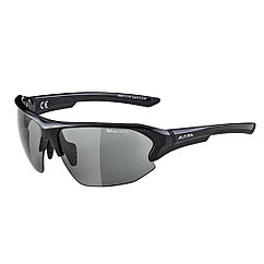 Alpina  солнцезащитные очки Alpina Lyron HR VL
