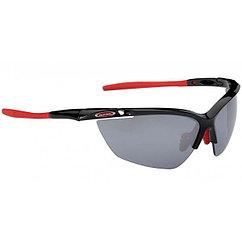 Alpina  очки Guard 2.0
