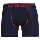 Icebreaker  шорты мужские Anatmca, фото 2