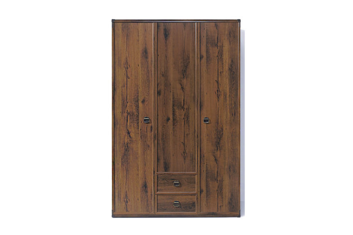 Шкаф для одежды 3Д (Indiana JSZF 3d2s), коллекции ИНДИАНА, Дуб Саттер, BRW-Украина (Украина), фото 2