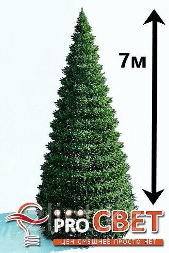 Искусственная каркасная елка Астана, хвоя-пленка 7 м (диаметр 3м)