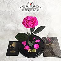 Роза ярко-розовая Кинг Сайз 33 см