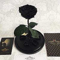 Роза черная Кинг Сайз 33 см