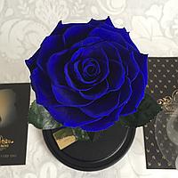 Роза синяя Кинг Сайз  33 см