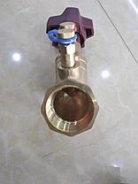 Клапан балансировочный Ду20 с измерительными ниппелями, фото 2