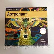 Крем Артропант для суставов, фото 3