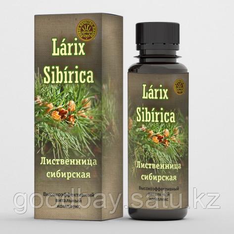 Бальзам от ВСД Larix Sibirica (Ларикс Сибирика), фото 2