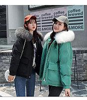 Куртка осень-зима в свободном стиле, черная и зеленая.