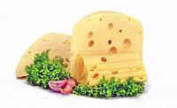 Для производства сыра, кисломо...