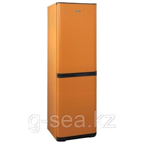 Холодильник Бирюса T131