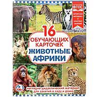 """Умка Наглядно-дидактический материал - 16 развивающих карточек """"Животные Африки"""""""