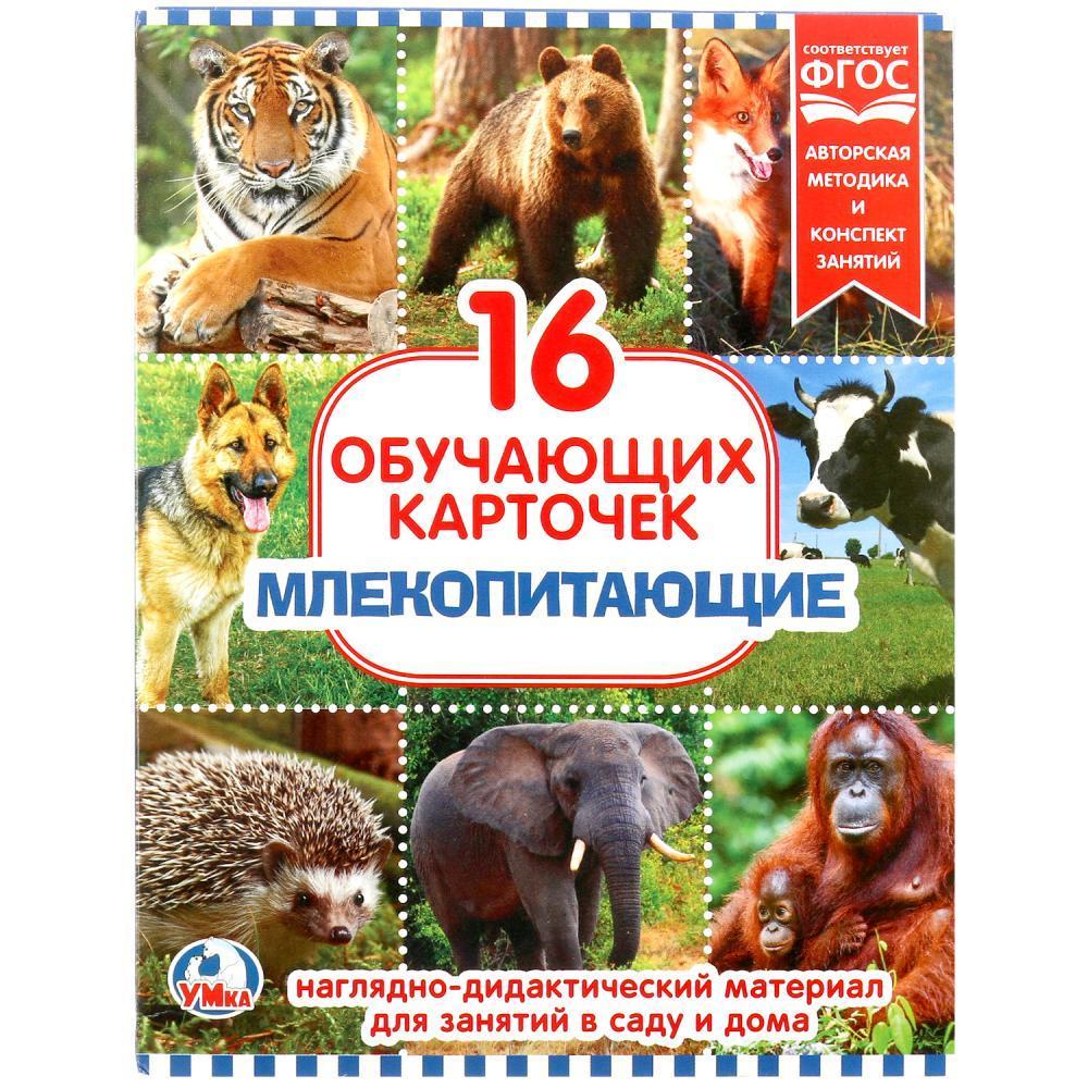 """Умка Наглядно-дидактический материал - 16 развивающих карточек """"Млекопитающие"""""""