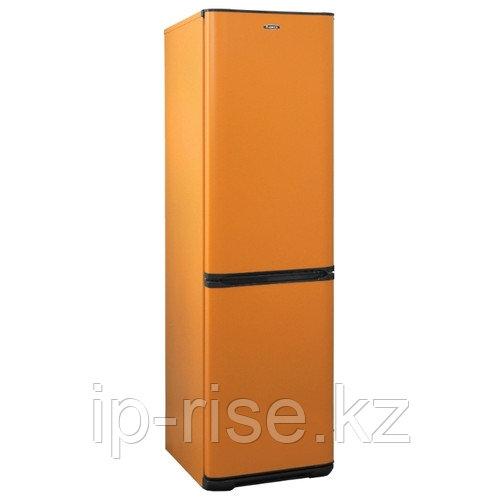 Холодильник Бирюса T149