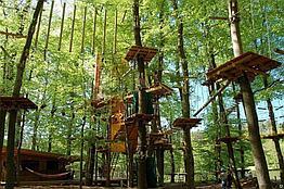 Детский спортивный комплекс Веревочные парки на деревьях