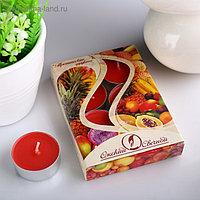 Набор чайных свечей ароматизированных «Тропические фрукты», 12 г, 6 штук