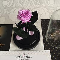 Мини роза в колбе Розовая 14 см