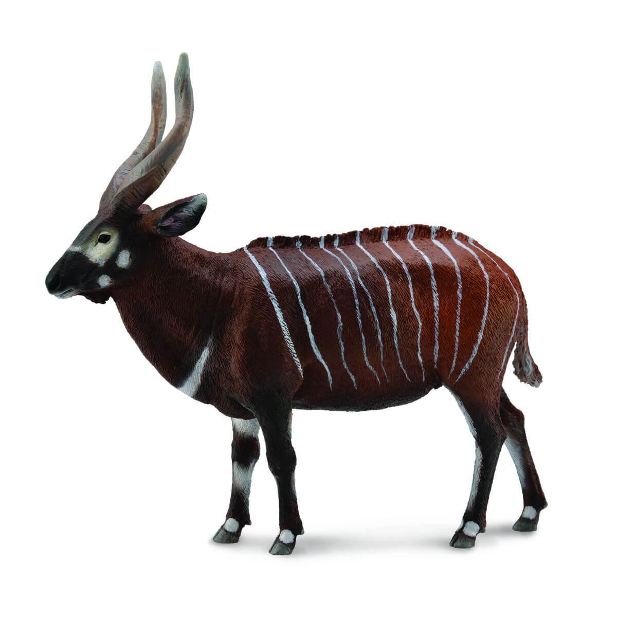 Антилопа Бонго, XL Collecta