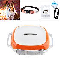 GT011 водонепроницаемый мини gps трекер локатор с wifi GSM GPRS трекер для домашних животных кошек собак