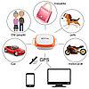 GT011 водонепроницаемый мини gps трекер локатор с wifi GSM GPRS трекер для домашних животных кошек собак, фото 9