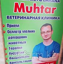 snimok_ekrana_2019_11_13_v_15.01.08.png