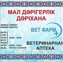 snimok_ekrana_2019_11_13_v_15.01.56.png