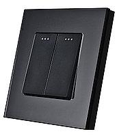 Двухклавишный выключатель Черный Стекло