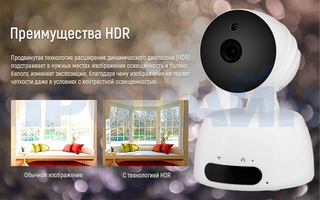 Внутренняя IP камера Proline IP-HPT829X поворотная с записью на карту памяти