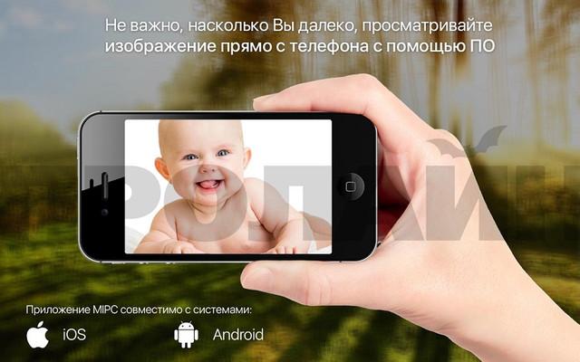 http://video-sfera.net/image/data/ip-3g-video/proline_ip_hpt826x-12.jpg