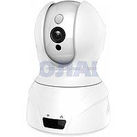 Внутренняя поворотная IP камера Qvint Wi-Fi и записью, фото 1