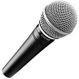 Микрофон Shure SM48S, фото 2