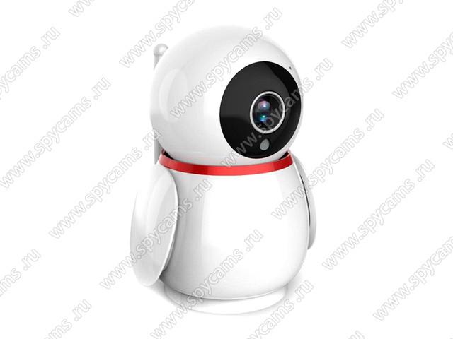 http://www.spycams.ru/slider/1000/hdcom-228-AW2-8GS-2.jpg