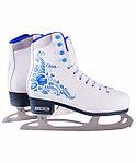 Коньки ледовые (хоккейные и фигурные)