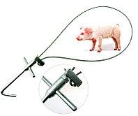 Держатель для свиней ТК, фото 1