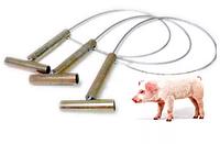 Держатель для свиней СТ