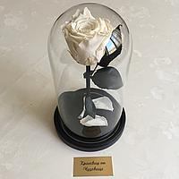 Роза в колбе стандарт белая 22 см