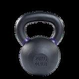 Гиря 20 кг чугунная фиолетовый кант, фото 2