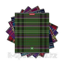 Тетрадь общая ученическая ErichKrause® Scottish Cage, 48 листов, линейка