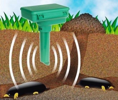 """Воздействие """"Weitech-WK675"""" на подземных вредителей"""