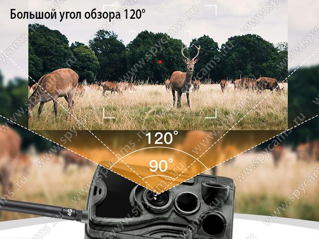 http://www.spycams.ru/slider/1000/filin-hc-801-lte-3_b.jpg
