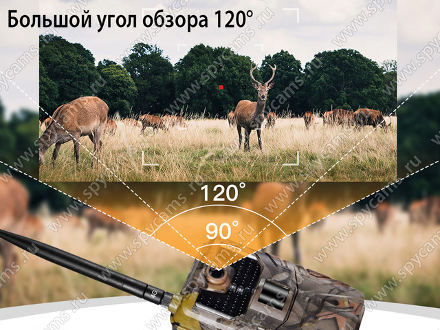 http://www.spycams.ru/slider/1000/filin-hc-900-lte-1-8.jpg