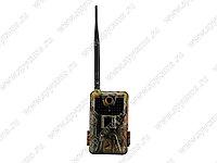 3G MMS Фотоловушка Suntek Филин HC-900G-3G, фото 1
