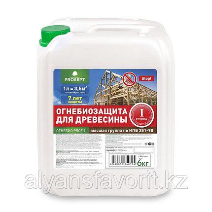 ОГНЕБИО PROF 1 (ПРОФ 1) -пропитка бесцветная огнебиозащита для древесины. 5 литров, фото 2