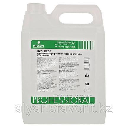 Bath Prof - средство для устранение засоров - концентрат. 5 литров. РФ, фото 2