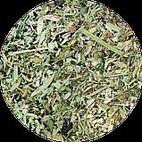 Травяной сбор «Для похудения с чёрным тмином, имбирём и стевией», 250 г, фото 2